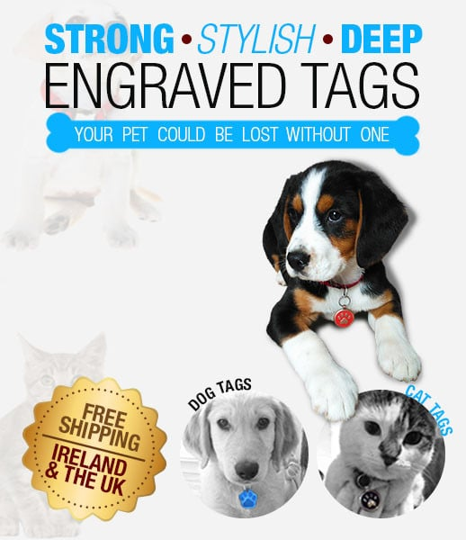 Buy Engraved Personalised Pet Tags For Easy Identification