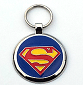 Large Blue Super Pet Tag