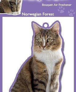 NORWEGIAN FORREST