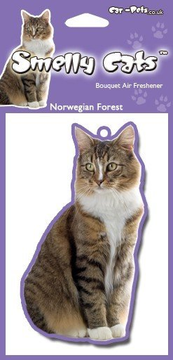 NORWEGIAN FORREST