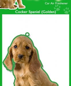 COCKERSPANIEL GOLDEN