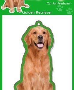 GOLDEN RETREIVER
