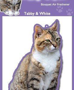 TABBY WEBIMAGE